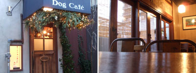 dogcafe02.jpg
