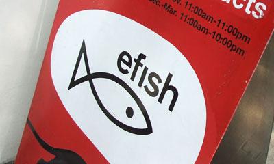 efish01.jpg